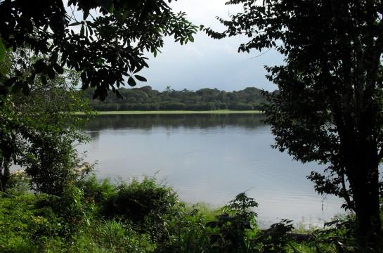 Acción Verde. Resguardo Ticoya. Amazonas.